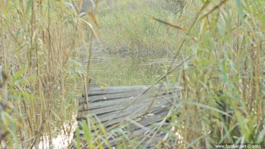 vizic-jezero-kapavica-8