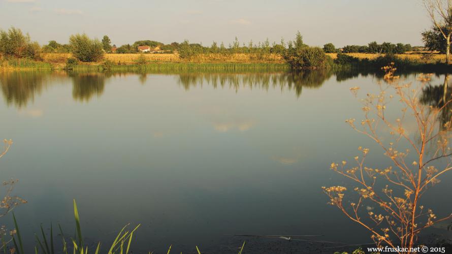 bingula-jezero-bingulsko-0